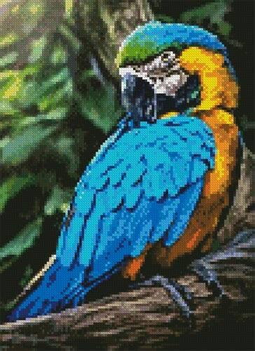 cross stitch pattern Mini Macaw Profile