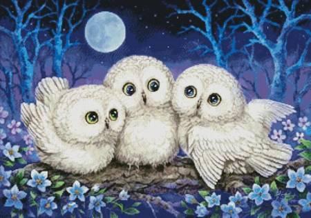 cross stitch pattern Owl Triplets