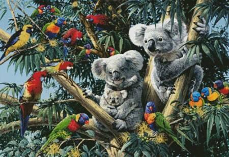 cross stitch pattern Koala Outback