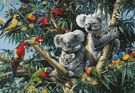 cross stitch pattern Koala Outback (Large)