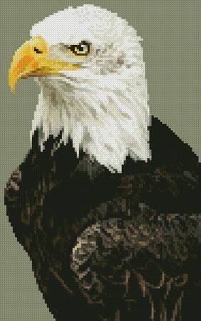 cross stitch pattern Mini Bald Eagle Portrait