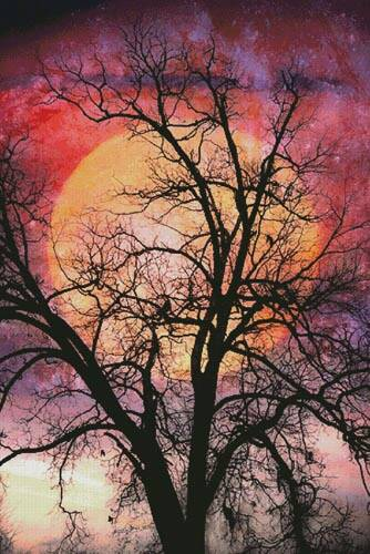 cross stitch pattern Moon in the Branches (Large)