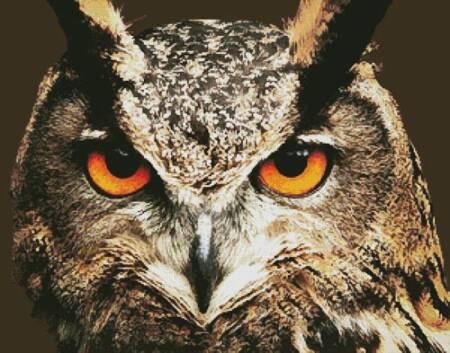 cross stitch pattern Owl Close Up