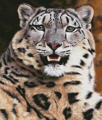 cross stitch pattern Snow Leopard Close Up (Large)