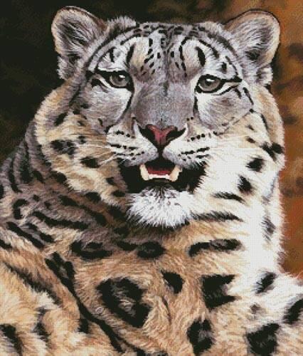 cross stitch pattern Snow Leopard Close Up