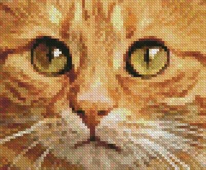 cross stitch pattern Tiny Ginger Cat Close Up