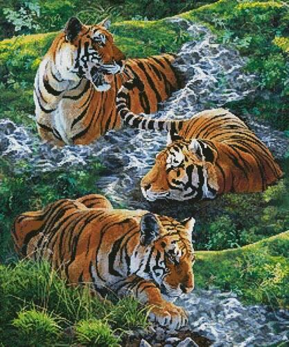 cross stitch pattern Tigers in Water