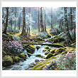 cross stitch pattern Natures Harmony