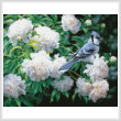 cross stitch pattern Blue Jay in Peonies