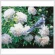cross stitch pattern Blue Jay in Peonies