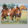 cross stitch pattern Horses Running