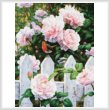cross stitch pattern Morning in Provence
