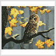 cross stitch pattern Tawny Owl (Crop)