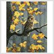 cross stitch pattern Tawny Owl