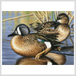 cross stitch pattern Blue Winged Teal Ducks