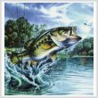 cross stitch pattern Airborne Bass (Crop)