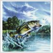 cross stitch pattern Airborne Bass