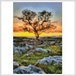 cross stitch pattern Mini Dales Dusk