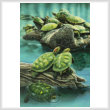 cross stitch pattern Turtle Pond