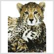 cross stitch pattern Baby Cheetah (No Background)