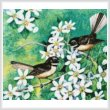cross stitch pattern Mini Fantails and Clematis