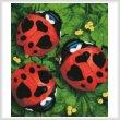 cross stitch pattern Lady Love Bugs