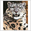 cross stitch pattern Mini Snow Leopard Close Up