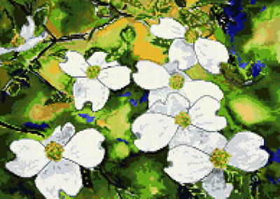 cross stitch pattern Dogwood