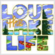 cross stitch pattern Love the Lake Life
