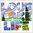 cross stitch pattern Love the Lake Life