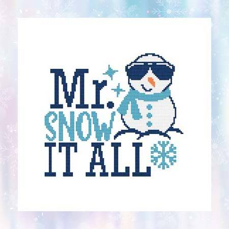 cross stitch pattern Mr Snow It All