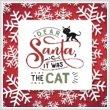 cross stitch pattern Dear Santa, It Was The Cat